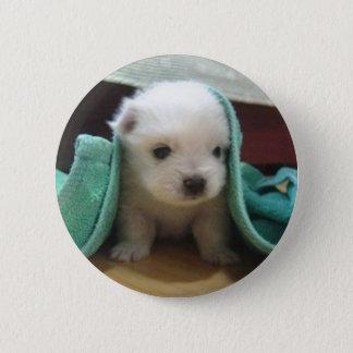 maltese puppy 2 inch round button