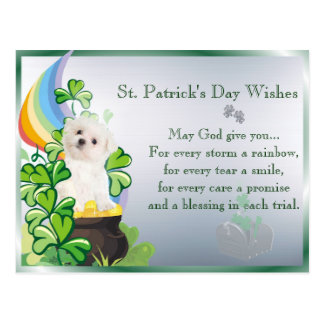 Maltese Puppy St Patricks Day You've Got Mail Postcard