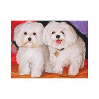 Maltese Pups Canvas Print