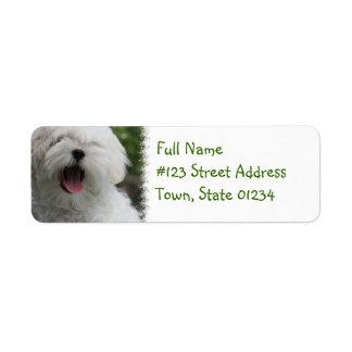 Maltese Return Address Label