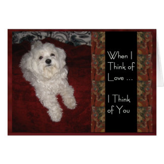 "Maltese 'Thinking of You with Love"" humor Card"