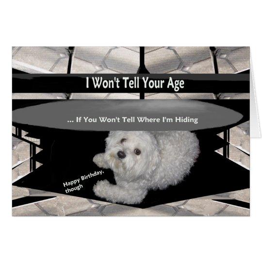 Maltese Under the Table Birthday Humour Card