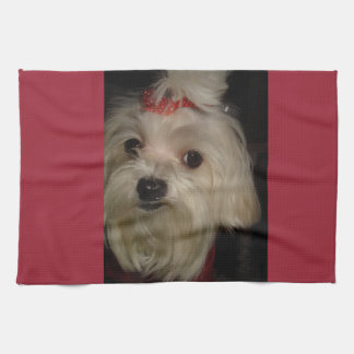 Maltese with Red Bow Kitchen Towel