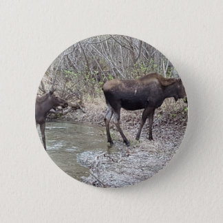 Mama and Baby Moose 2 Inch Round Button