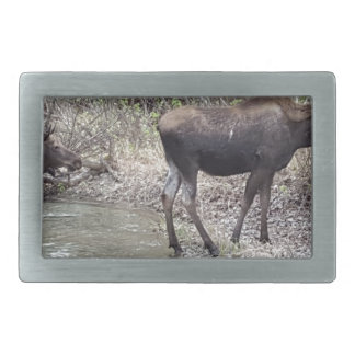 Mama and Baby Moose Belt Buckle