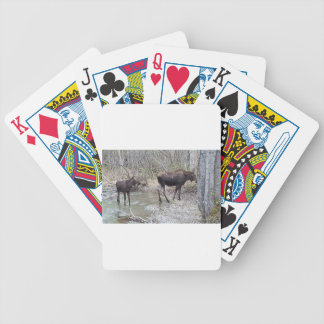Mama and Baby Moose Bicycle Playing Cards