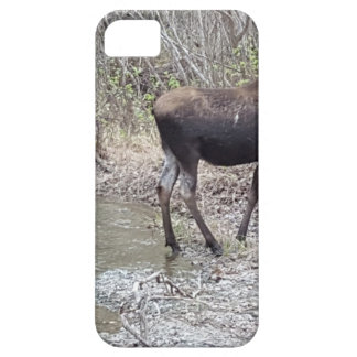 Mama and Baby Moose iPhone 5 Covers