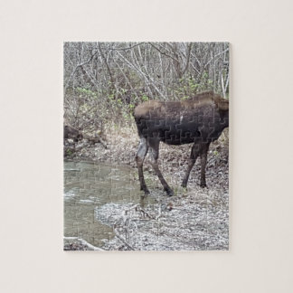 Mama and Baby Moose Jigsaw Puzzle