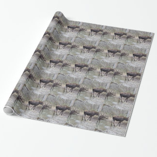 Mama and Baby Moose Wrapping Paper