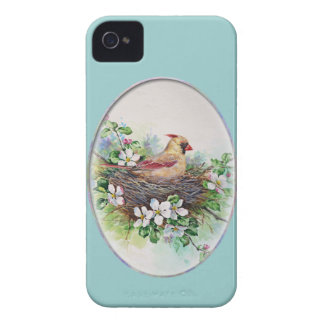 Mama Cardinal Redbird on nest Case-Mate iPhone 4 Case