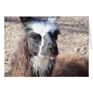 Mama Llama Greeting Card