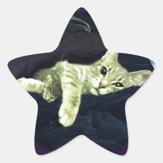 Mama Mimi & her Baby Kitties Star Sticker