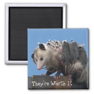 Mama Possum Babies Pro-Life Humorous Magnet