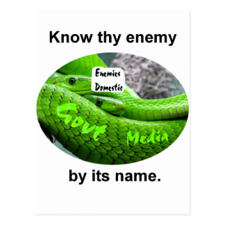 Mamba Snake - Know Thy Enemy By Its Name Postcard