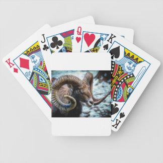 Mammal Nature Animal World Animal Mouflon Bicycle Playing Cards