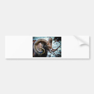 Mammal Nature Animal World Animal Mouflon Bumper Sticker