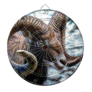 Mammal Nature Animal World Animal Mouflon Dartboard