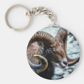 Mammal Nature Animal World Animal Mouflon Keychain