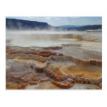 Mammoth Hot Springs Yellowstone Postcard