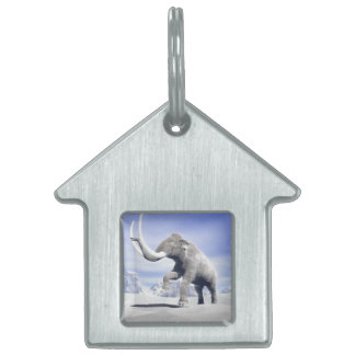 Mammoth in the wind pet name tag