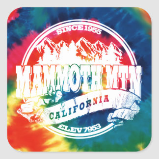 Mammoth Mtn TieDye Square Sticker