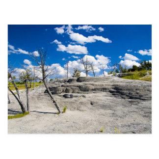 Mammoth Springs Postcard