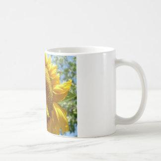mammoth sunflower coffee mug