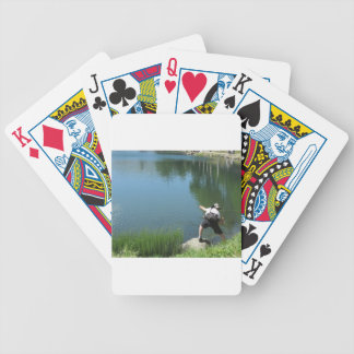 Man fly fishing on a mountain lake bicycle playing cards