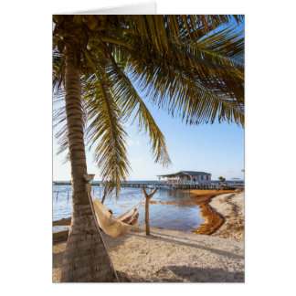 Man Relaxing In A Hammock Under Palm Tree, Belize Card