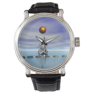 man sun and steps planets watch