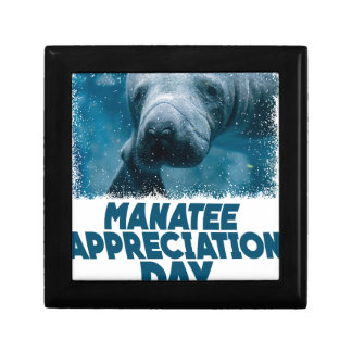 Manatee Appreciation Day Jewelry Boxes