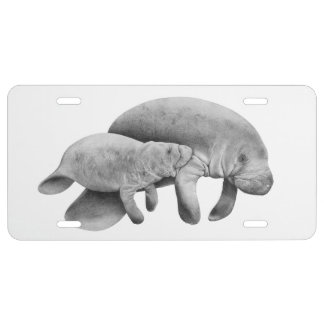 Manatee Mother and Calf License Plate