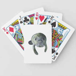 Manatee Springs Bicycle Playing Cards
