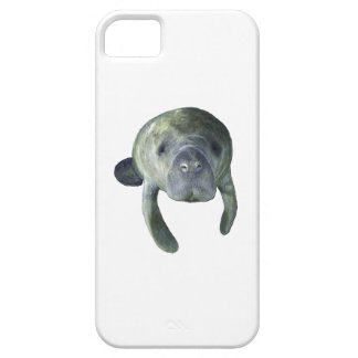 Manatee Springs iPhone 5 Cover