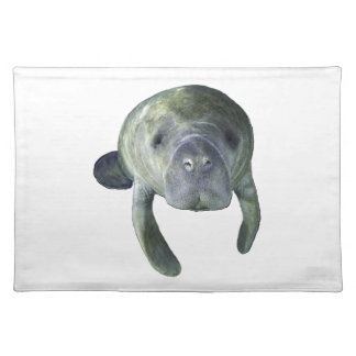 Manatee Springs Placemat