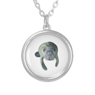 Manatee Springs Silver Plated Necklace
