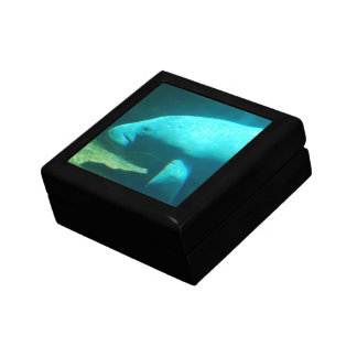 Manatee Swimming Gift Box