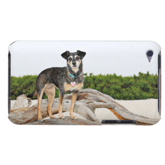 Manchester Terrier X - Jordan - Derr Barely There iPod Case