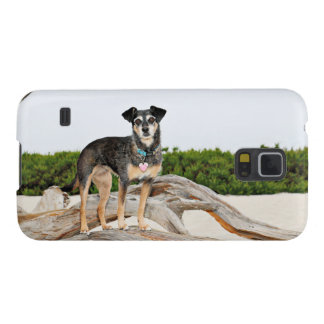 Manchester Terrier X - Jordan - Derr Case For Galaxy S5