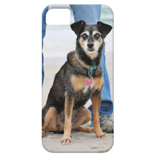 Manchester Terrier X - Jordan - Derr Case For The iPhone 5