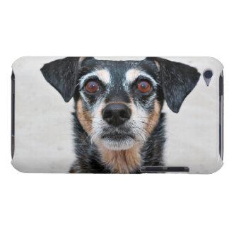 Manchester Terrier X - Jordan - Derr iPod Touch Case-Mate Case