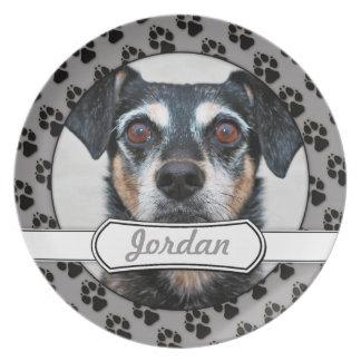 Manchester Terrier X - Jordan - Derr Plates