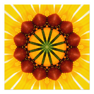 Mandala - Black-Eyed Susan Art Photo