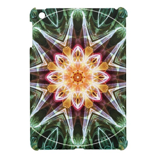 Mandalas from the Heart of Change 5, Gift Items Case For The iPad Mini