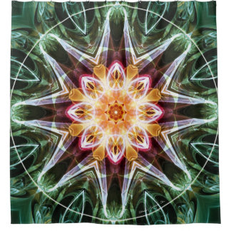 Mandalas from the Heart of Change 5 Shower Curtain