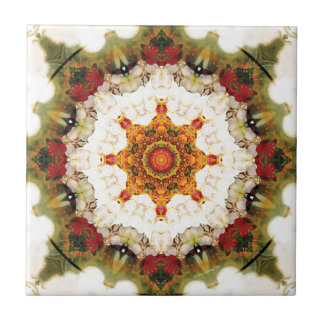 Mandalas from the Heart of Freedom 16 Gifts Ceramic Tiles