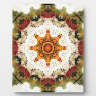 Mandalas from the Heart of Freedom 16 Gifts Plaque