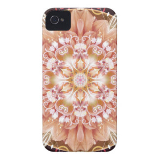 Mandalas from the Heart of Freedom 2 Gifts iPhone 4 Covers