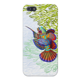 Mandarin Dragonet Goby Fish iPhone Case iPhone 5 Cover