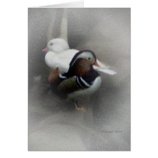 Mandarin Duck and Friend... Card